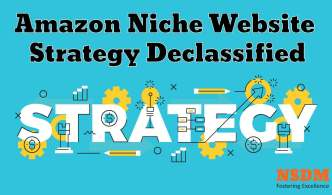 Amazon Niche Website Strategy Declassified